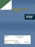CLASSIFICAÇÃO+DOS+TUMORES+CEREBRAIS