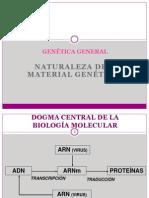 11B NATURALEZA DEL MATERIAL GENÉTICO (filminas)