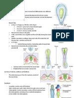 Neuroscience Notes 2012