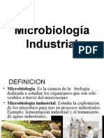 1. Micro Industrial[1]