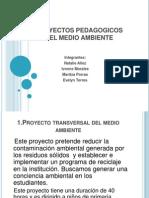 proyectospedagogicosdelmedioambiente-100901202550-phpapp02