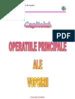 Operatiile Principale Ale Vopsirii