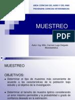 MUESTREO (TEORIA)