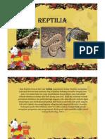 Reptil Dan Mamalia
