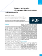 Domains of Water Molecules Provide Mechanisms of Potentisation 2010