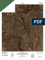 Topographic Map of Emory Peak