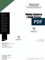 Medidas Cautelares y Debido Proceso - Sebastian Irun Croskey