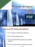 PTI Cluster Del Salmón