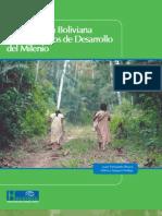 La Amazonía Boliviana y los Objetivos de Desarrollo del Milenio