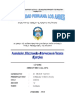 Ejemplos de Acumulacion, Litisconsorcio