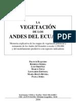 Vegetación  Andes del Ecuador