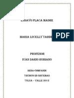 Placa Madre Ensayo Lucelly
