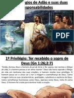 Os 7 Privilégios de Adão e suas duas Responsabilidades(Gn 2:7-10;2:19-25)