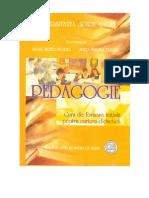 Manual Pedagogie an 2