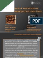 1ª biomaratón de identificación de bacterias filamentosas