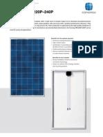Conergy-PowerPlus-220-240P (módulos)