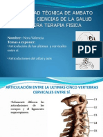Exposicion de Anatomia