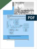 10. Fisika Inti Dan Radioaktivitas