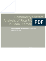 Commodity System Analysis of Rice Production in Baao