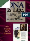 3.1 DNA Replication