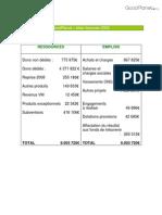 Fondation GoodPlanet - Bilan Financier 2009