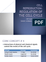 Cell Cycle Control and Cancer