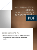Meiosis, Gametogenesis, & Errors in Cell Division