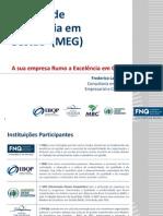 MEG Introducao e Implantação