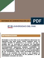 Sistemas de administración de inventarios