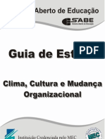 Clima Cultura Mudanca Organizacional