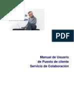 Manual de Usuario Puesto de Cliente 4.2 Exchange