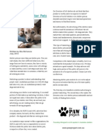 Marketing Shelter Pets
