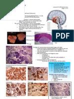 4 Endocrine Patho