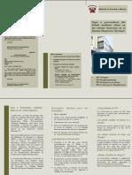 Pago Electronico DGTP 2003