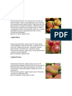 Caracteristici Soiuri de Pomi Fructiferi