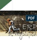 ERP Demystified - Presentation