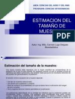 ESTIMACION DEL TAMAÑO DE MUESTRAS