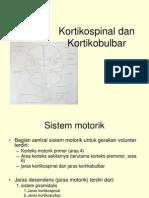 Kortikospinal Dan Kortikobulbar (2)