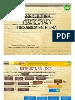 Agricultura Tradicional vs Orgánica