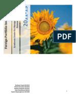 Final_Foreign Investment Portfolio