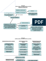 esquema_elaboracion_leyes