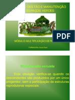 1195747956 Multiplicacao de Plantas
