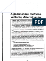 0e7cap 7 Algebra Lineal, Matrices, Vectotes y Determinantes