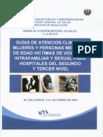Guia Victimas VIF y Sexual p1(2)