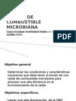 Celdas de Combustible Microbiana