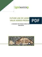 Future Use of Lignin