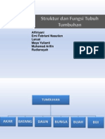 Biologi - Struktur Dan Fungsi Tumbuhan