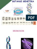 biologi - substansi genetika