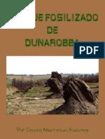 El Bosque Fosilizado de Dunarobba