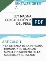 DERECHOS DEL NIÑO - PARA PONENCIA